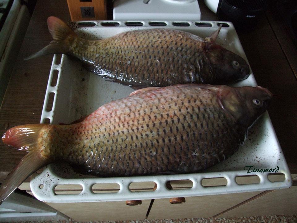 рыба-2.jpg