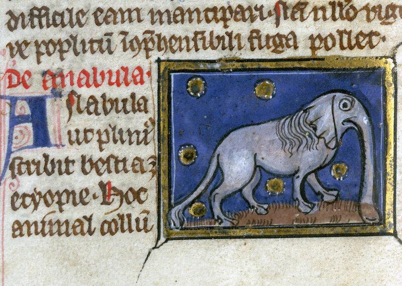 Thomas of Cantimpré, Liber de natura rerum, France ca. 1290.Valenciennes, Bibliothèque municipale, ms. 320, fol. 51v.