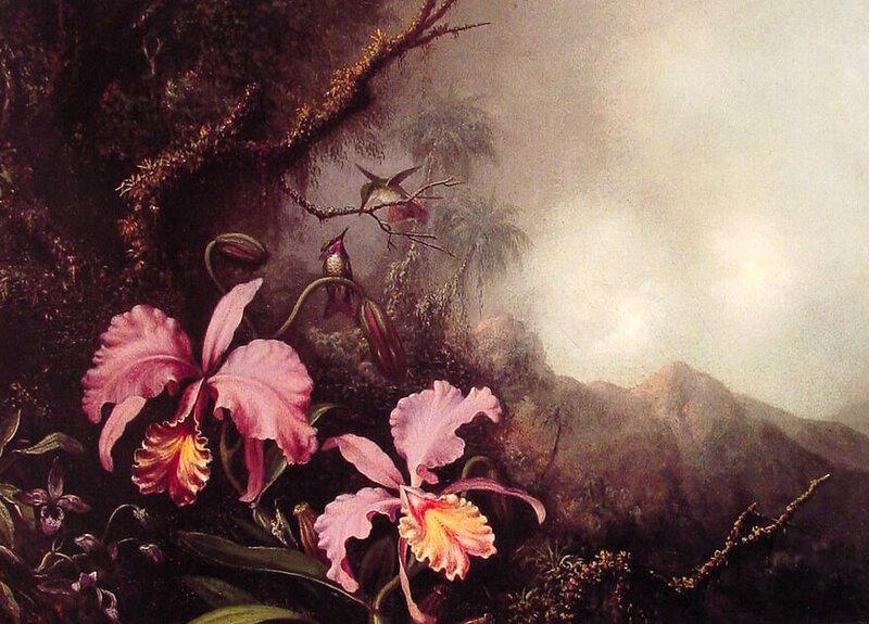 Martin Johnson Heade. Часть- 5. Орхидеи.