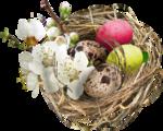 MRD_EggStraSE_floral-eggs nest.png