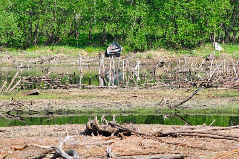 Летом водохранилище высыхает по берегам (27.06.2013)
