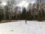 поляна между Абрамцевской и Радонежской просеками