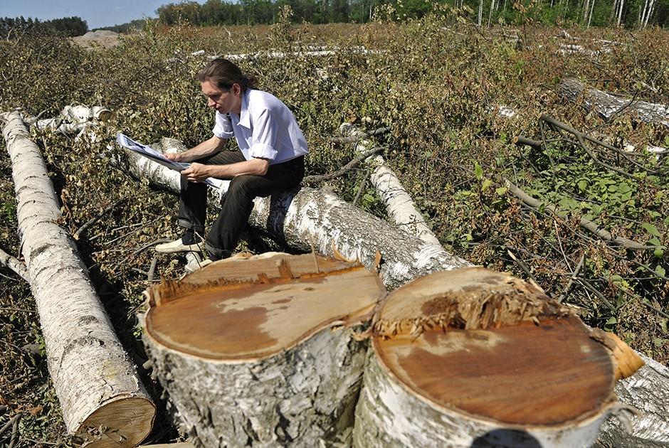 2. Березовый луб Это мягкая часть березового ствола между берестой и собственно древесиной. Традицио