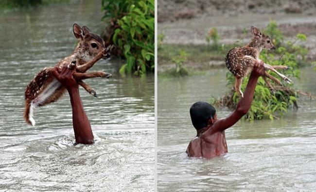 Вовремя наводнения неподалеку отокруга Нокхали вНародной Республике Бангладеш мальчик поимени Би