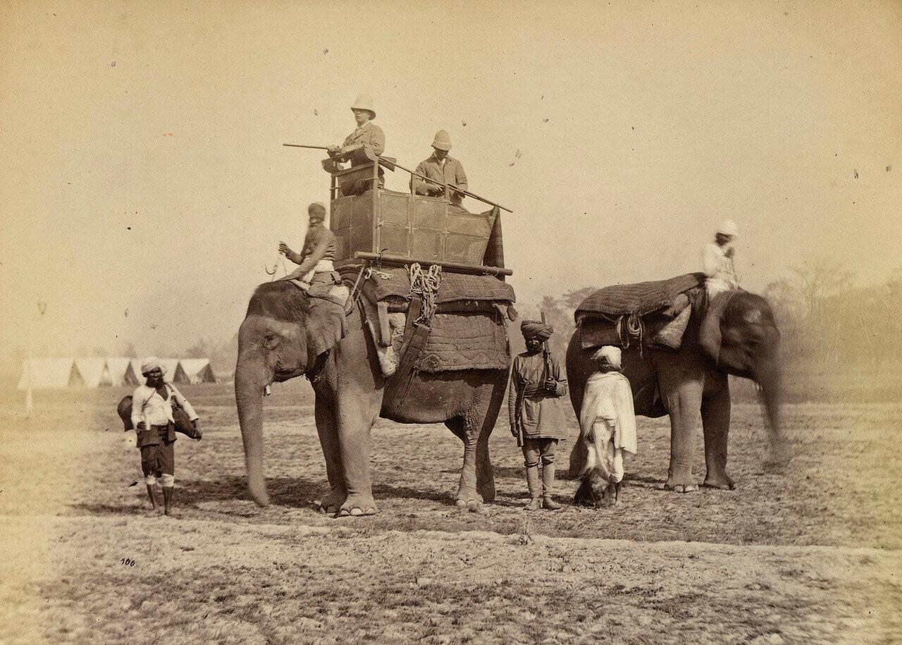 129. Чарльз Уильям де ла Повер Бересфорд, 1-й барон Бересфорд (1846—1919, английский адмирал, общественный деятель и политик, во время путешествия Принца Уэльского его личный адъютант) на слоне