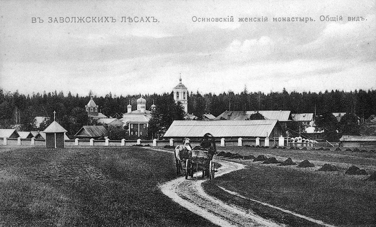 Осиновский женский монастырь. Общий вид