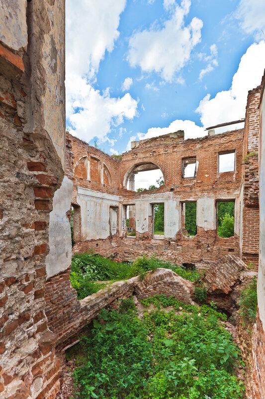 Руины дворца Вяземских, что на Наре