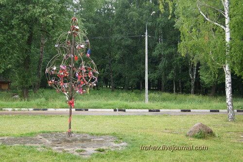 Дерево влюбленных, Солнечногорск