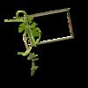 RRD_EK_GardenFresh cluster C.png