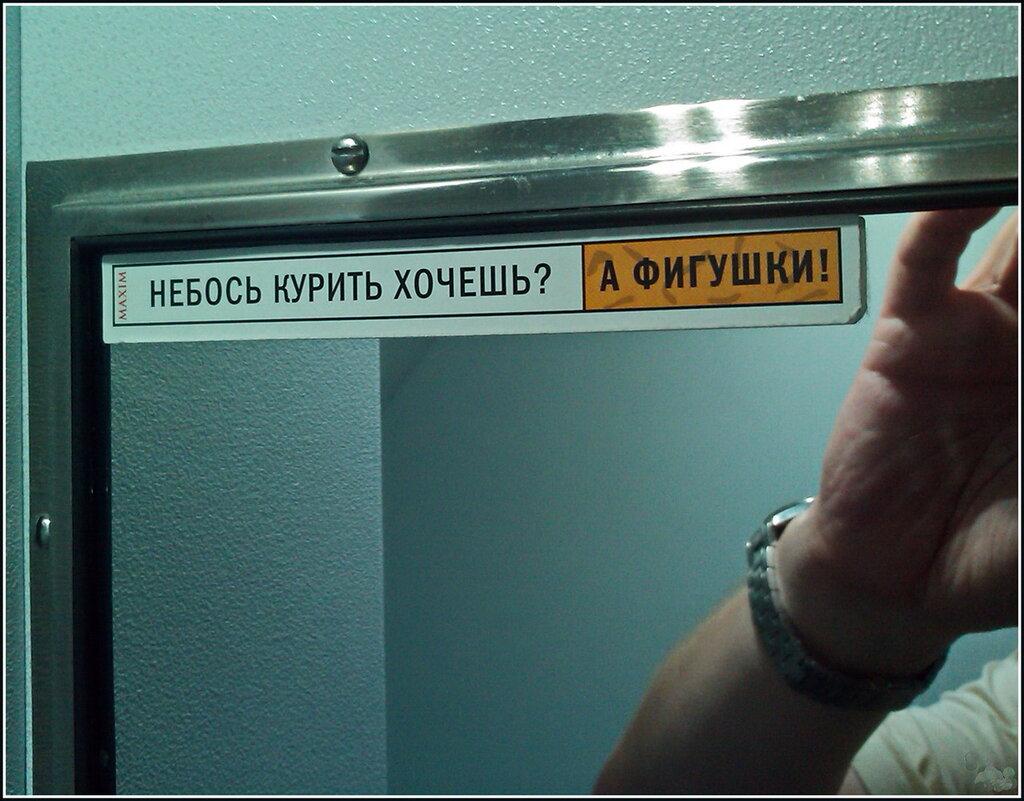 https://img-fotki.yandex.ru/get/9227/205164045.2d/0_bc3df_f334bb0f_XXL.jpg
