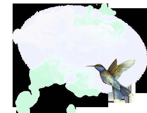 небо, птица png