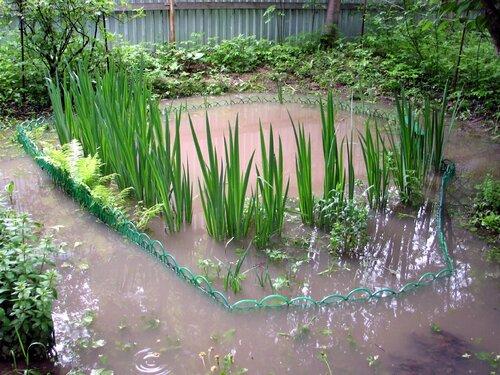 Разлив пруда