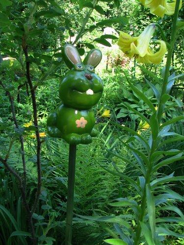 Зеленый заяц