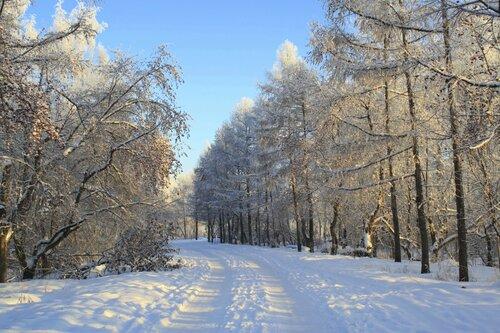 Проходит по парку зима не спеша...