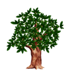tree (36).png