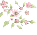KMILL_flowerbranch.png