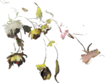 ldavi-paintersfaeries-paintedfloweroverlay6.png