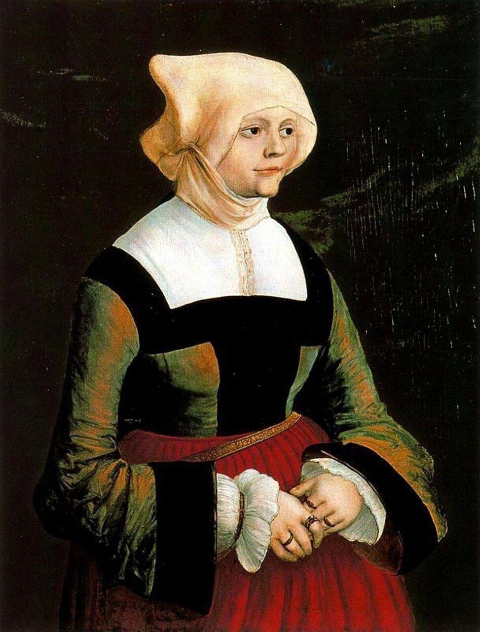 Картины старых мастеров, Альберт Альтдорфер, Портрет молодой женщины.jpg