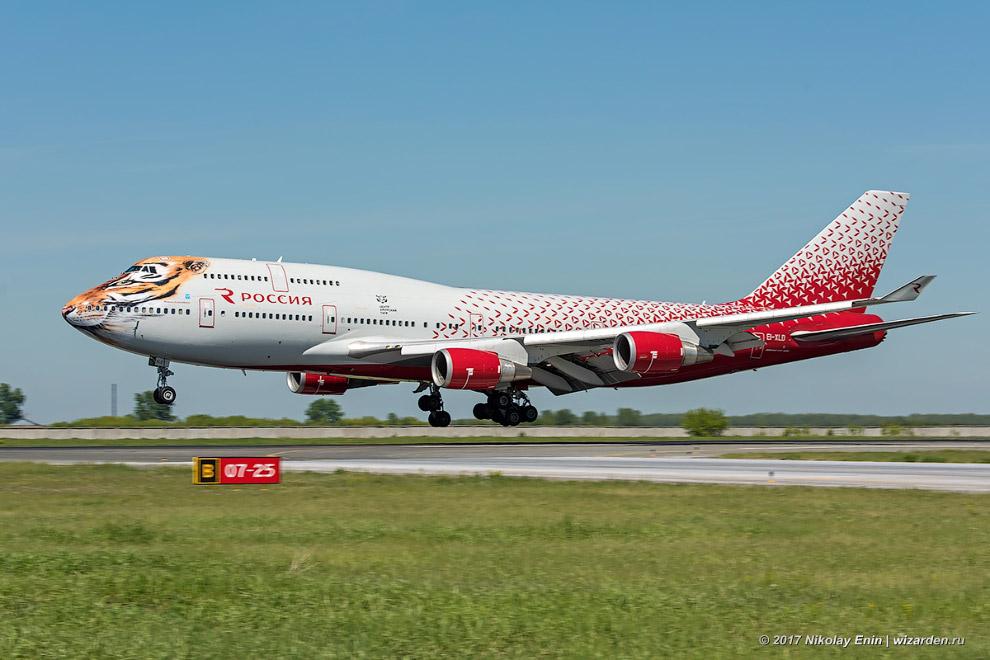 3. До «России» борт успел потрудиться в «Japan Airlines» и «Трансаэро». У «Трансаэро», кстати,