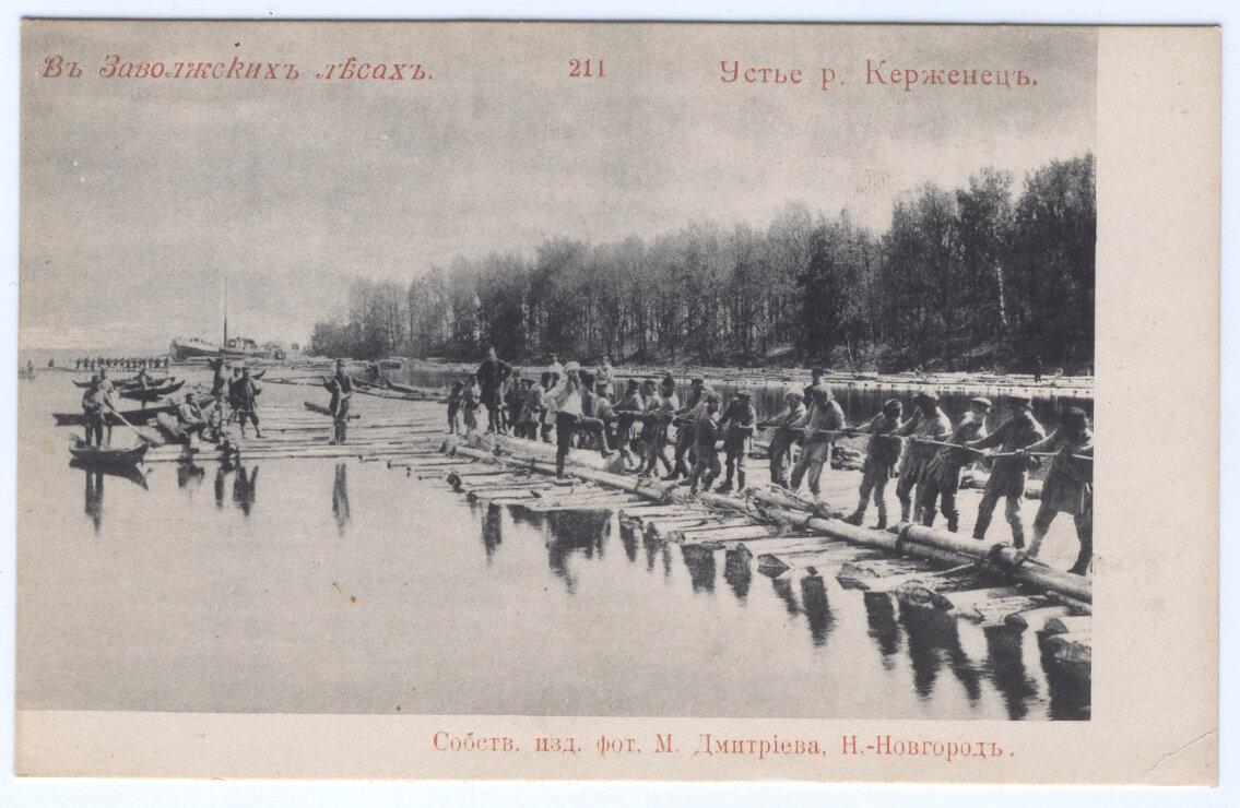 Устье реки Керженец