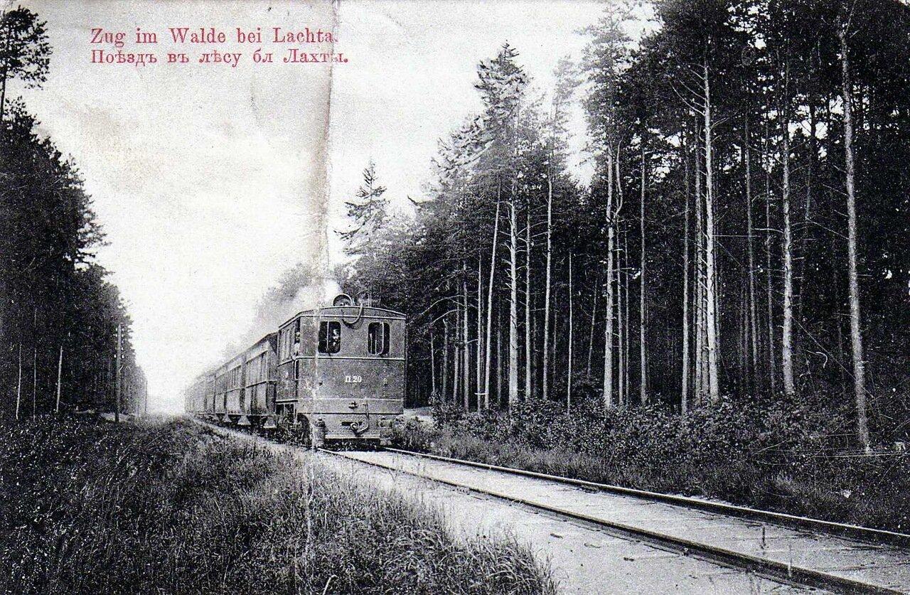 Поезд в лесу близ Лахты