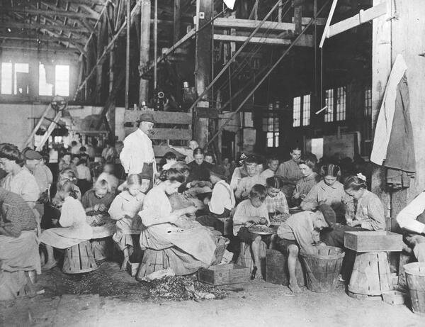 Children working in a vegetable cannery as their pipe-smoking supervisor watches over them, 1912