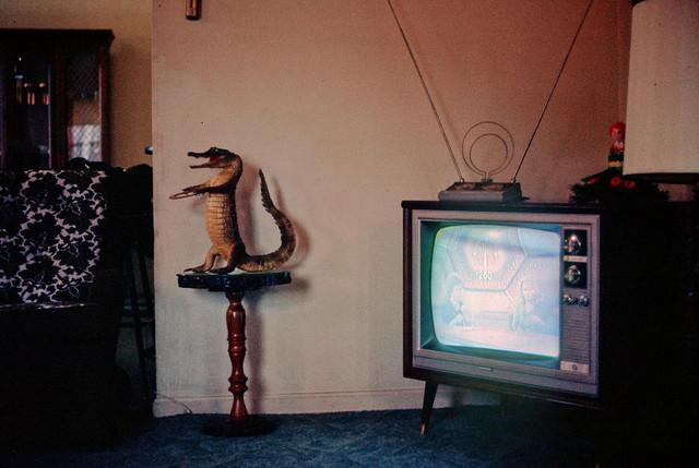 New Mexico, 1974. Marcelo Montecino.jpg