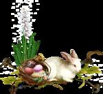 MRD_EggStraSE_cluster4sh.png