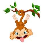 обезьянка на   ветке.jpg