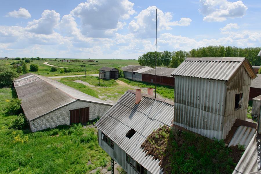 ферма елизарьево