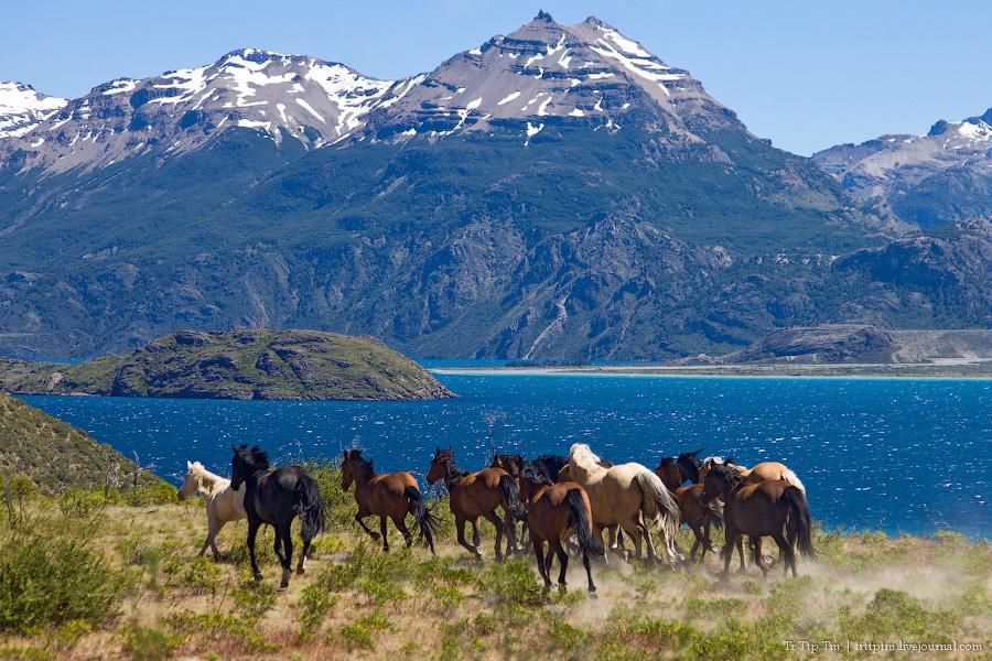 9. Лазурь и мрамор озера Буэнос Айрес - Хенераль Каррера.