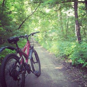 Утренние велопрогулки