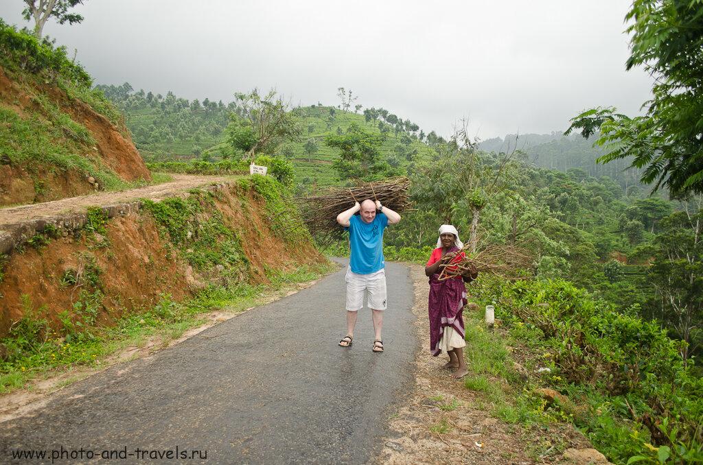Бюджет расходов на отдых в Шри-Ланке. Если с собою не будет денег, придется отрабатывать сбором хвороста в горах Центрального нагорья.
