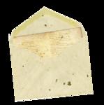 damayanti_my_cookbook_letter.png