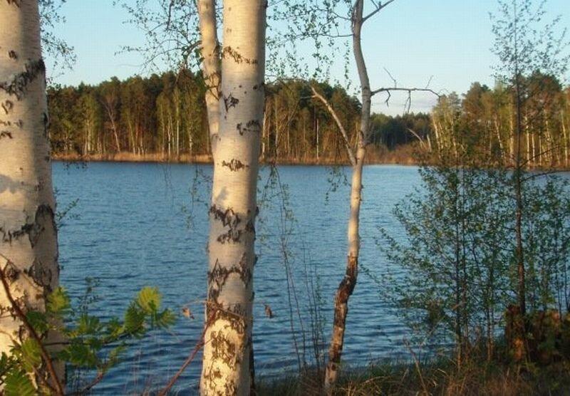 Озеро с целебными грязями (10.07.2013)