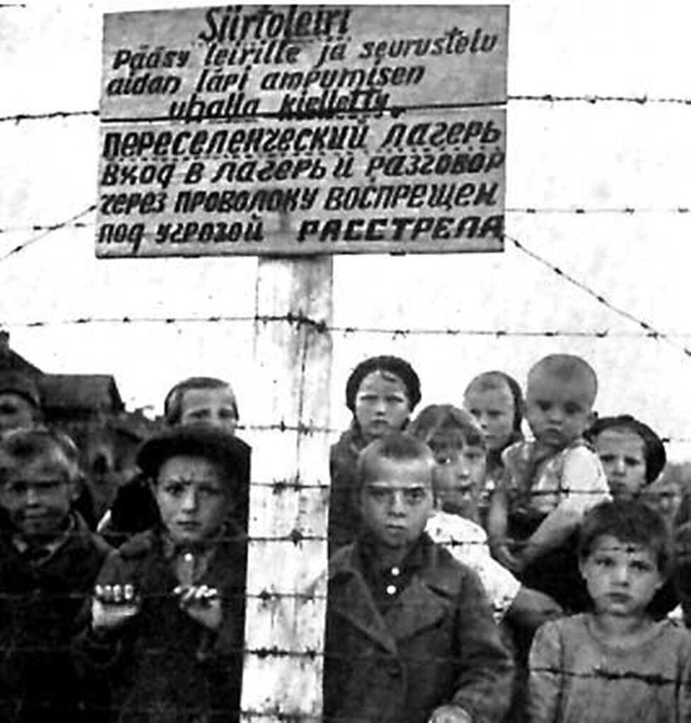 Концлагерь дети и война фото