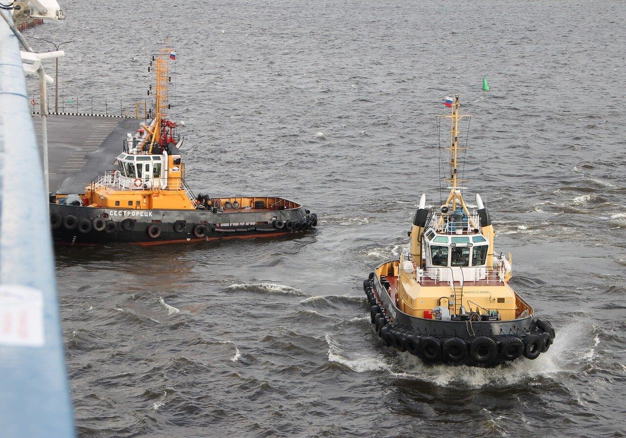 Saint-Petersburg. the port tugs