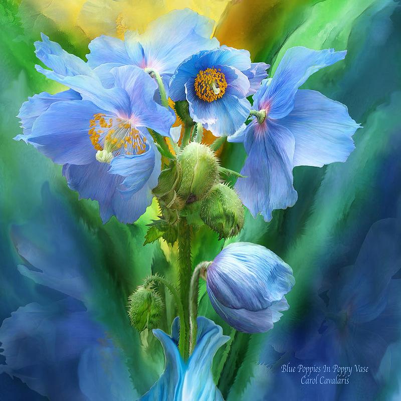 Кэрол Каваларис. Цветы