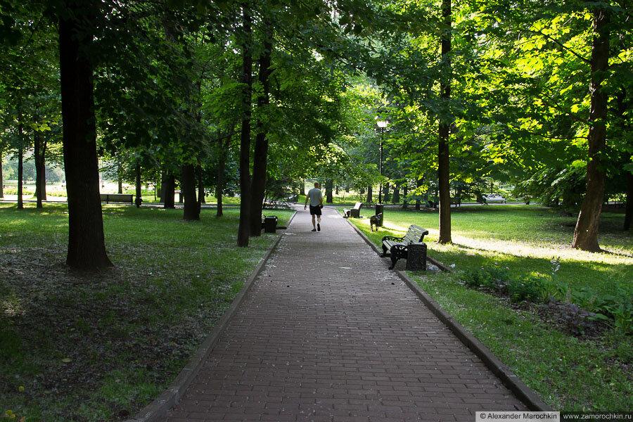 Мужчина с собакой в Екатерининском парке