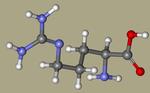 Arginine - DL-Arginine, 7200-25-1, arginin, 2-amino-5-guanidinopentanoic acid, AG-G-82898-CID_232.png
