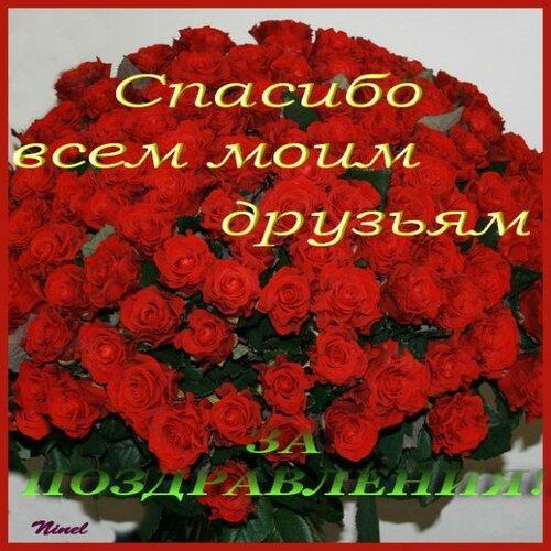 Спасибо всем за поздравление моего день рождения