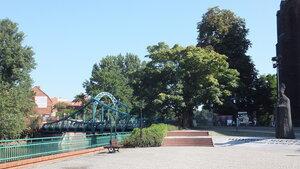 Вроцлав. Тумской остров