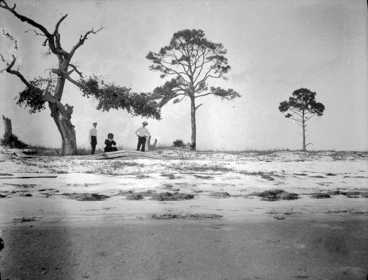 1899. Остров Кэт