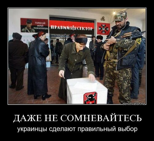 На выборы Президента в Украину приедет около тысячи наблюдателей ОБСЕ - Цензор.НЕТ 3670