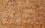Textures of brick walls (13).jpg