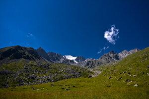 Кавказ (20100809 - 11.09.27).jpg