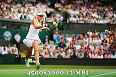 http://img-fotki.yandex.ru/get/9251/14186792.35/0_d9604_513af10e_orig.jpg