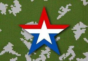символ армии.jpg