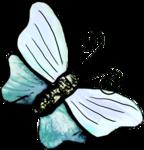 SeedlingInTheGarden_Agnesingap_el (43).png