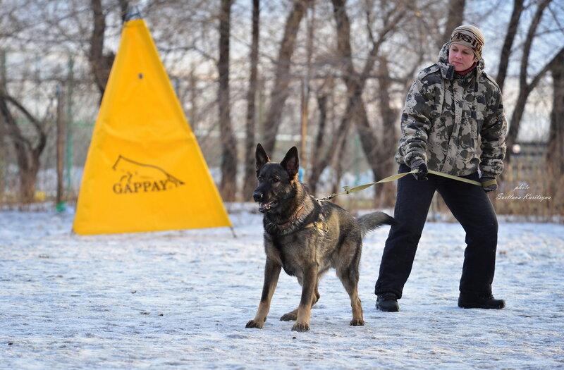 http://img-fotki.yandex.ru/get/9251/22682307.fb/0_b6865_5db189c2_XL.jpg